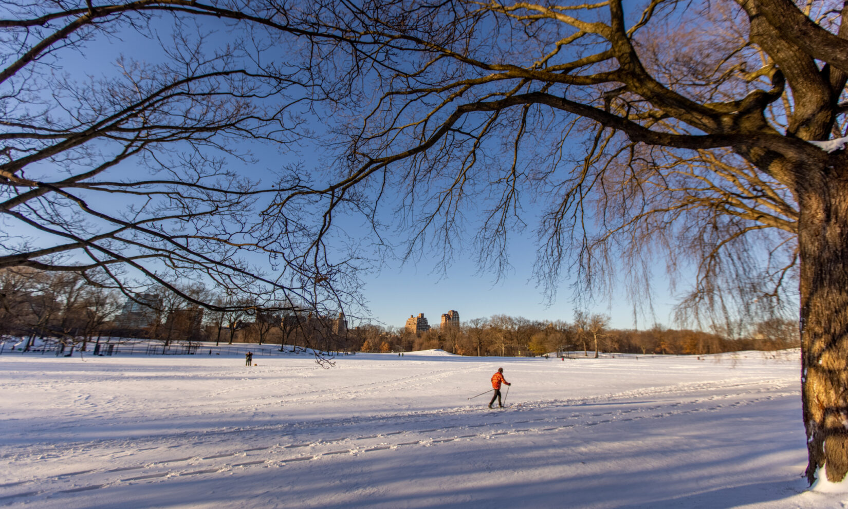 A cross-country skier treks across North Meadow under a crisp winter blue sky