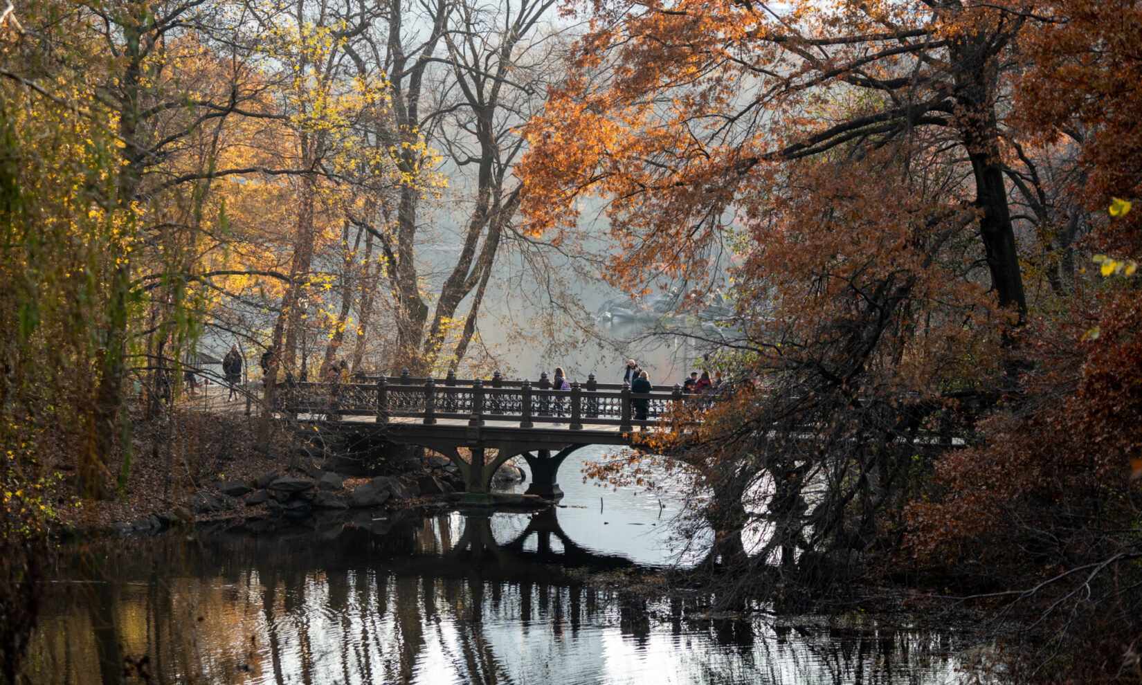 The bridge, shot in autumn light, under arched branches of foliage