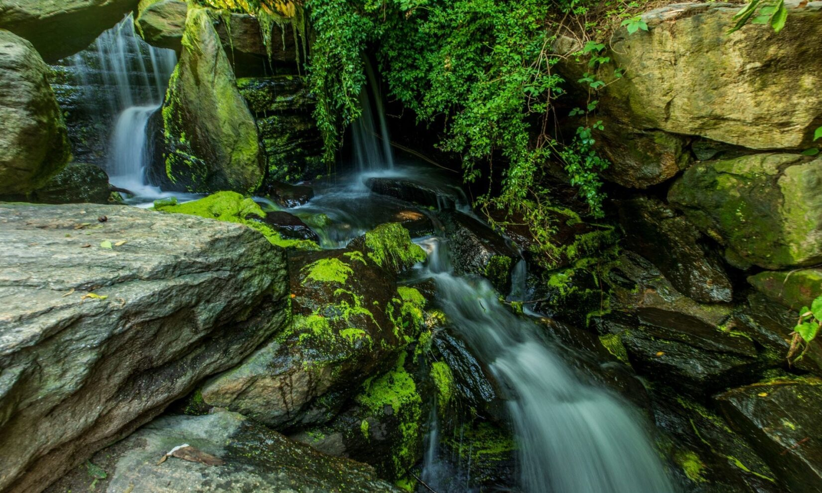 A waterfall tumbles down a rocky ledge in the Ravine.