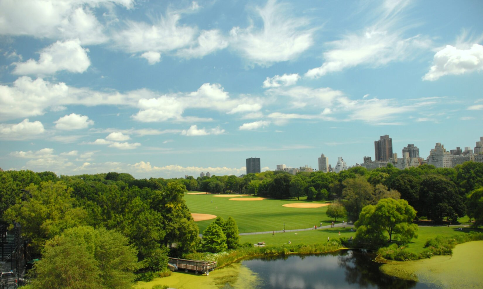 Summer Great Lawn Central Park credit the Central Park Conservancy