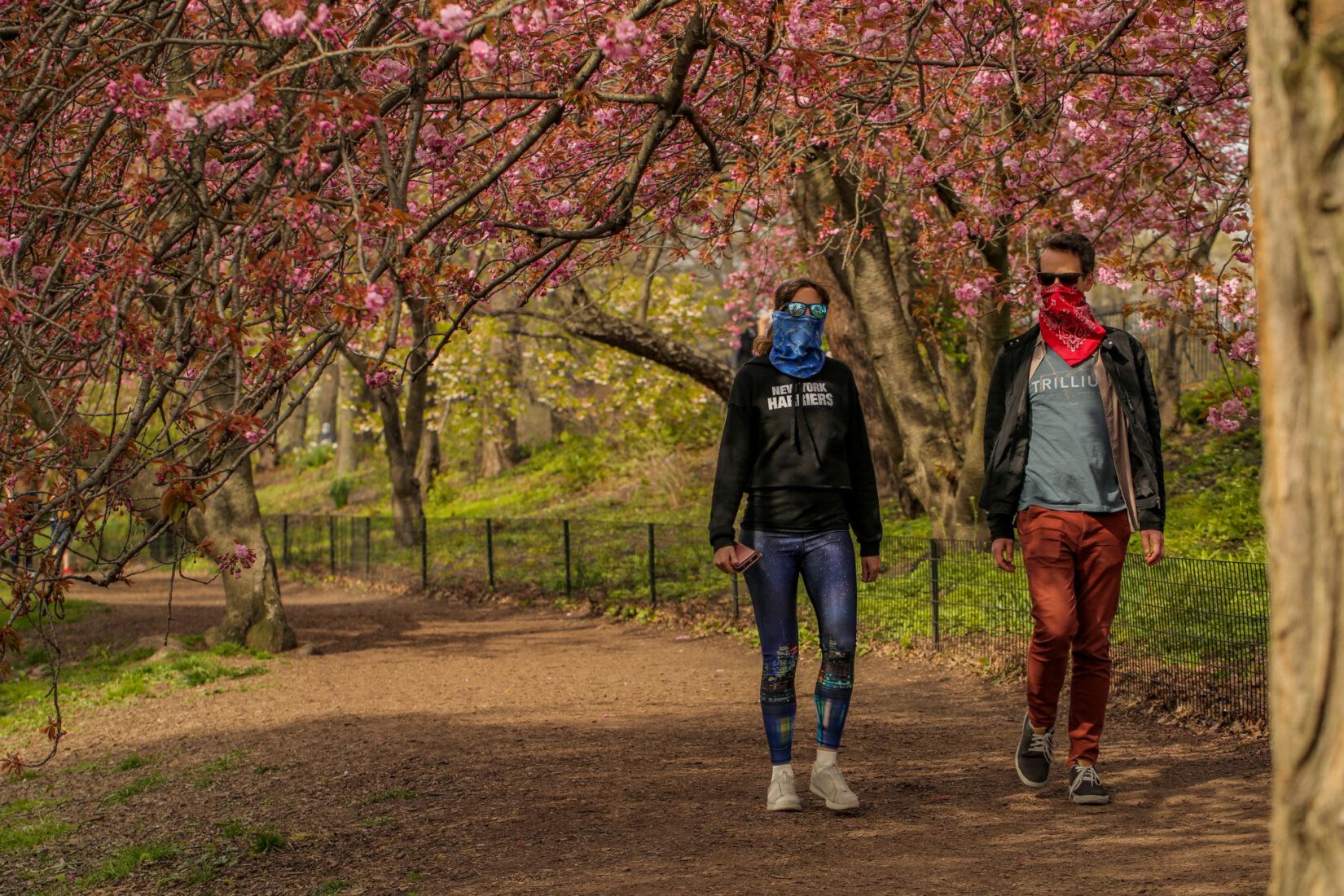 Park-goers, masked, alone on a stroll