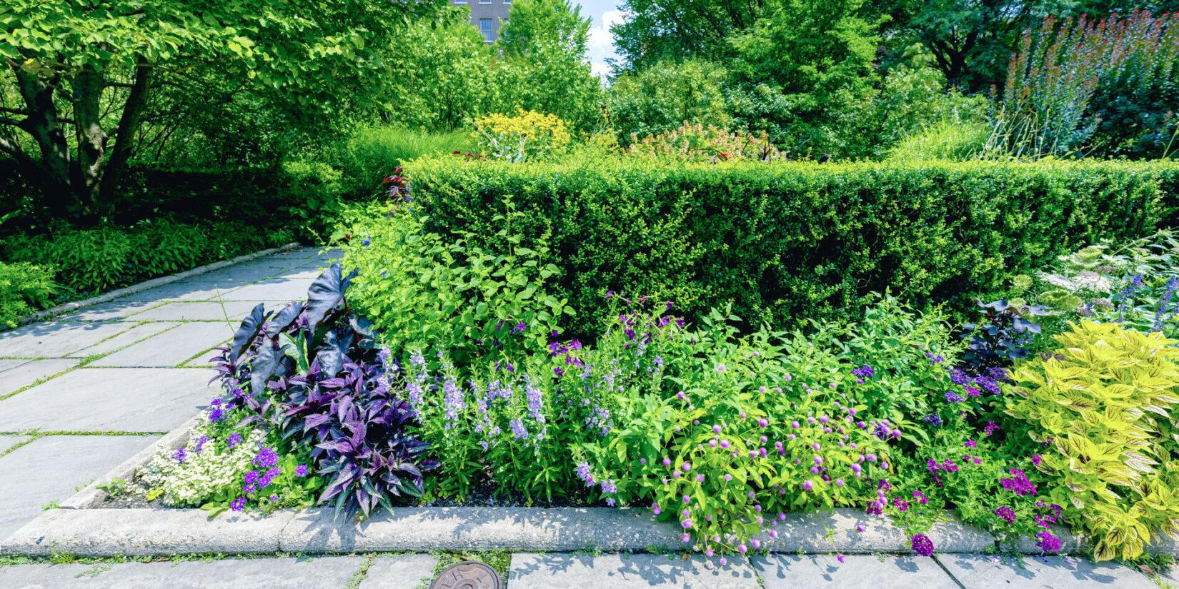 Conservatory Garden 20210728 01