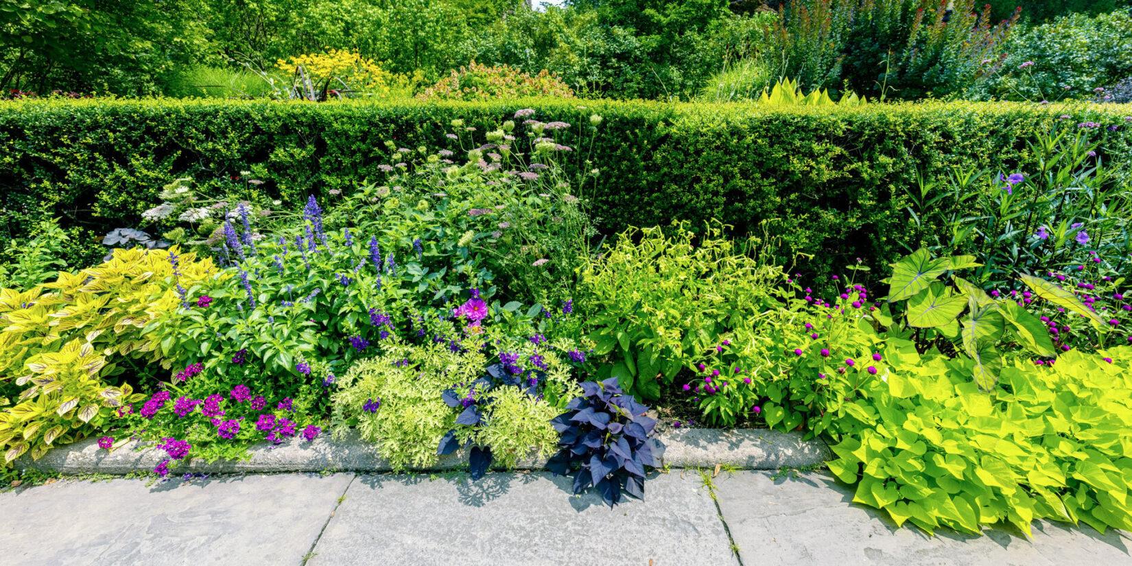 Conservatory Garden 20210728 02