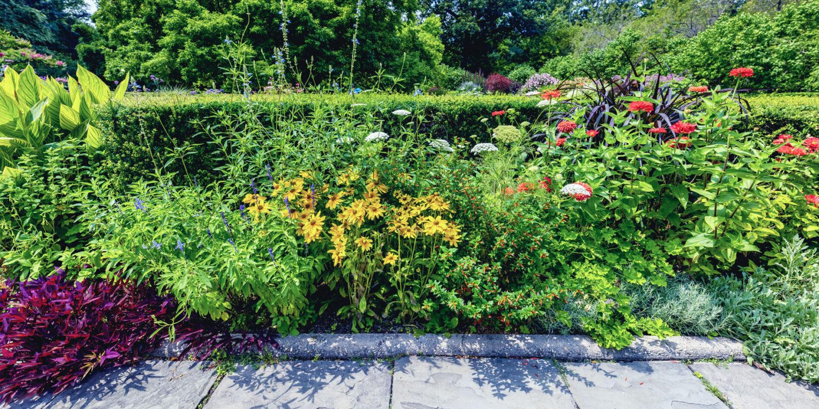 Conservatory Garden 20210728 08