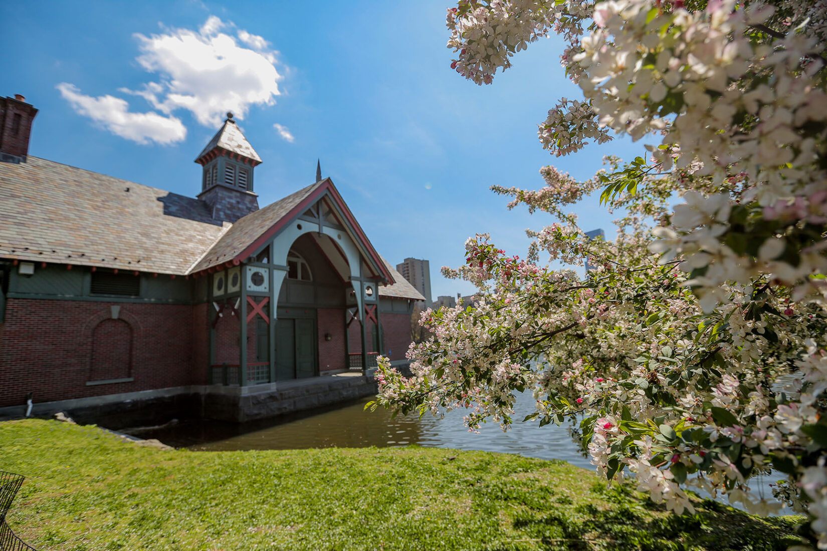 The Dana Discovery Center is pictured on the banks of the Harlem Meer under a blue sky, framed on one side by a blooming tree