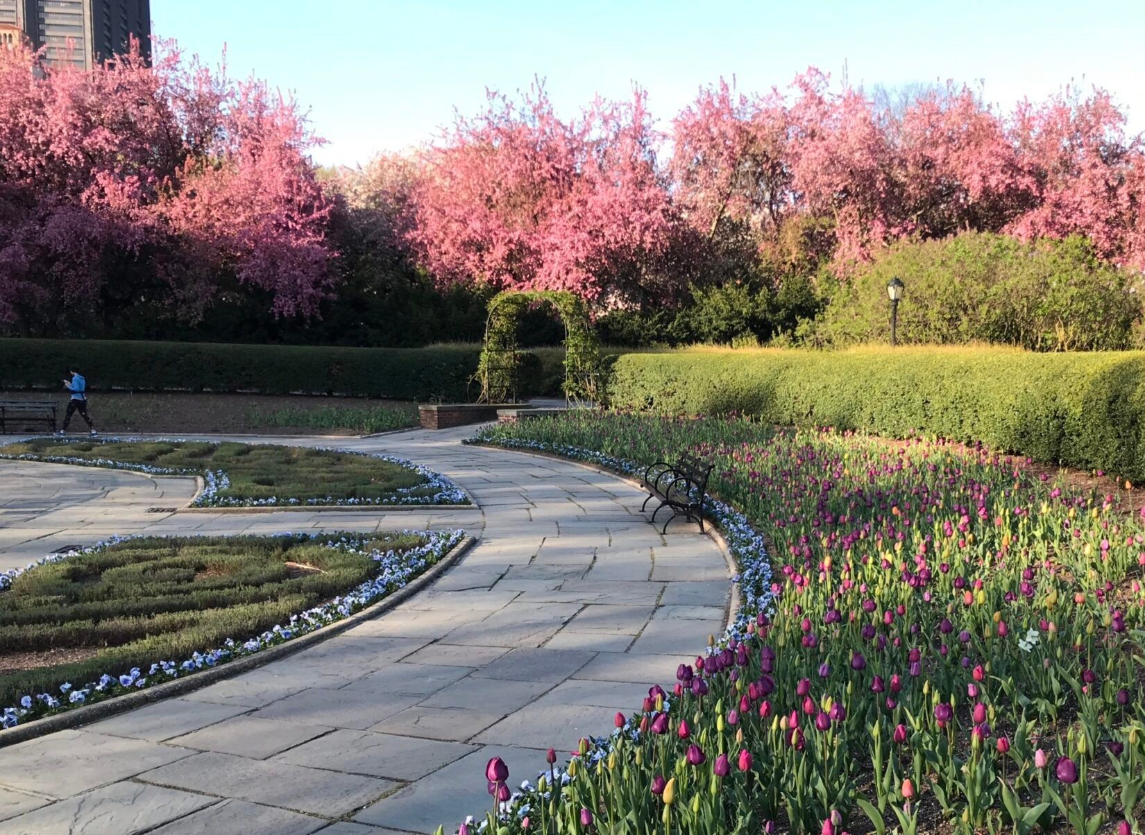 The curved path of the garden is ringed by spring flowers and a manicured hedge.