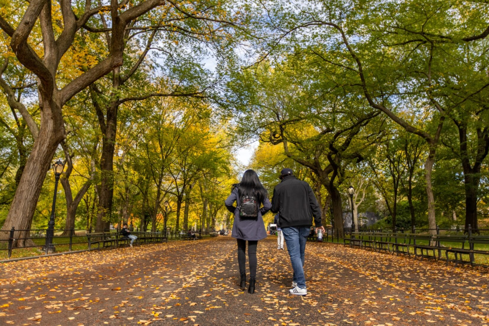 A couple stroll down the Mall over fallen leaves and under branches of fall foliage