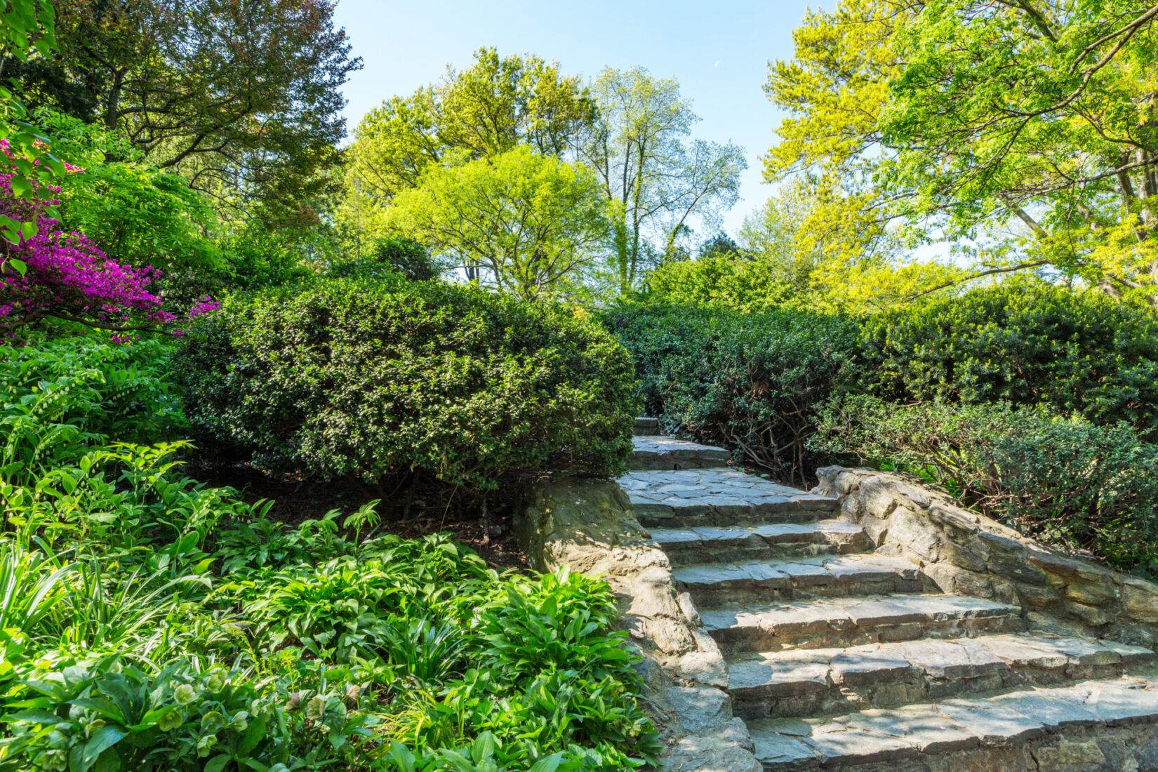 The stone steps leading up the Shakespeare Garden