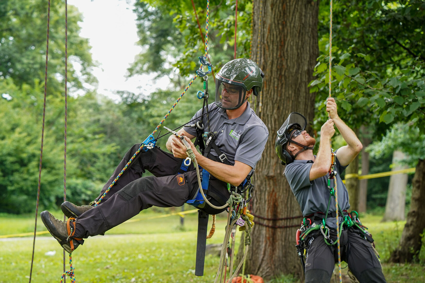 Tree Climbing Preparation