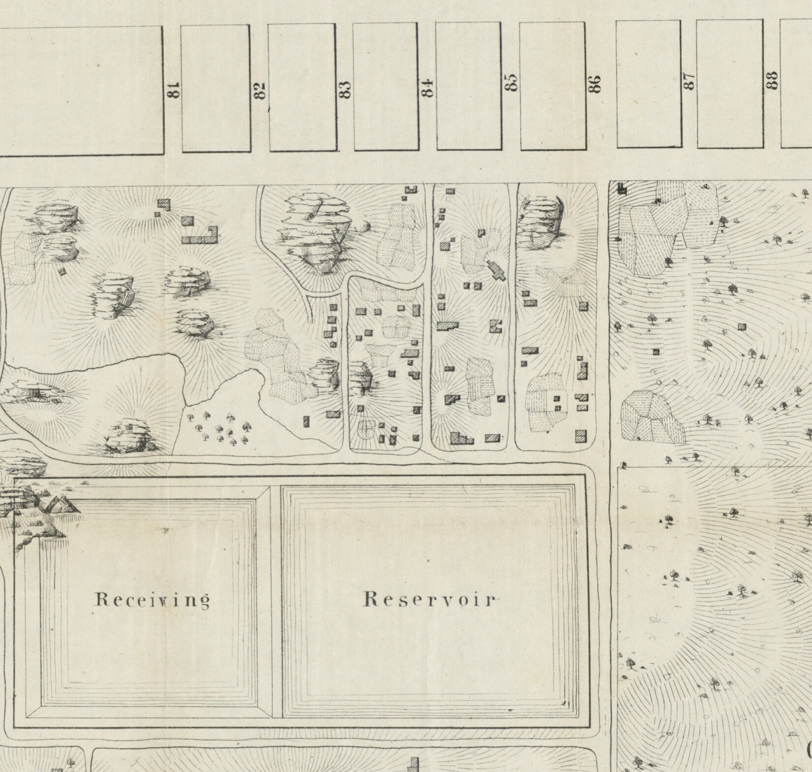 The map is an antique engraving showing plots, paths, and trees.
