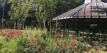 Community parks gardener training 2018 05 08