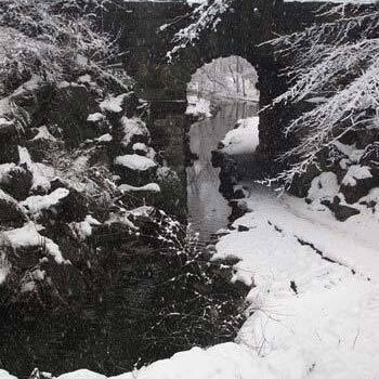 Ramble winter l