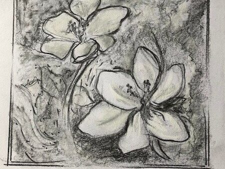A pastel drawing of corcuses