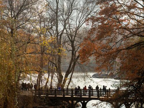 Oak Bridge silhouetted in autumn twilight as it spans the Lake