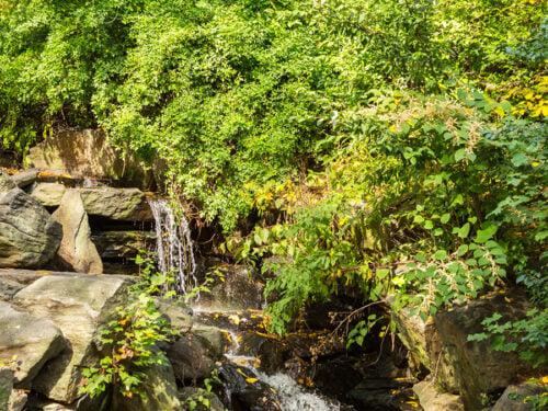 Water cascades down rocks in the Ramble