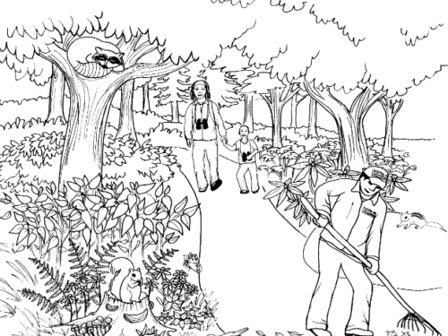 Coloring page featuring a parent and child encountering a park maintenance worker on a tree-lined path