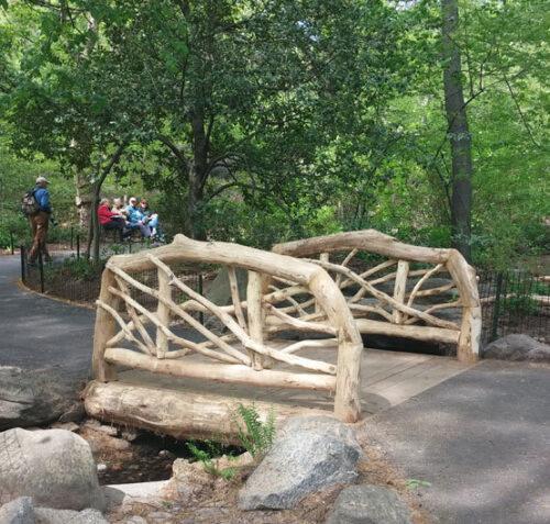 The new rustic bridge across Azalea Pond
