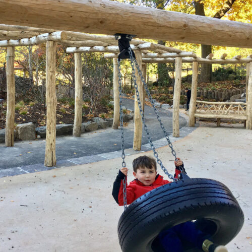 The tire swing after reconstruction