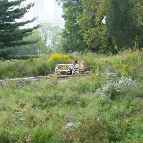 Rustic seating pictured on Dene Slope