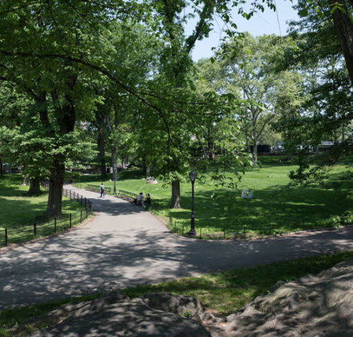 A sun-dappled view of the restored  Rumey Playfield and path