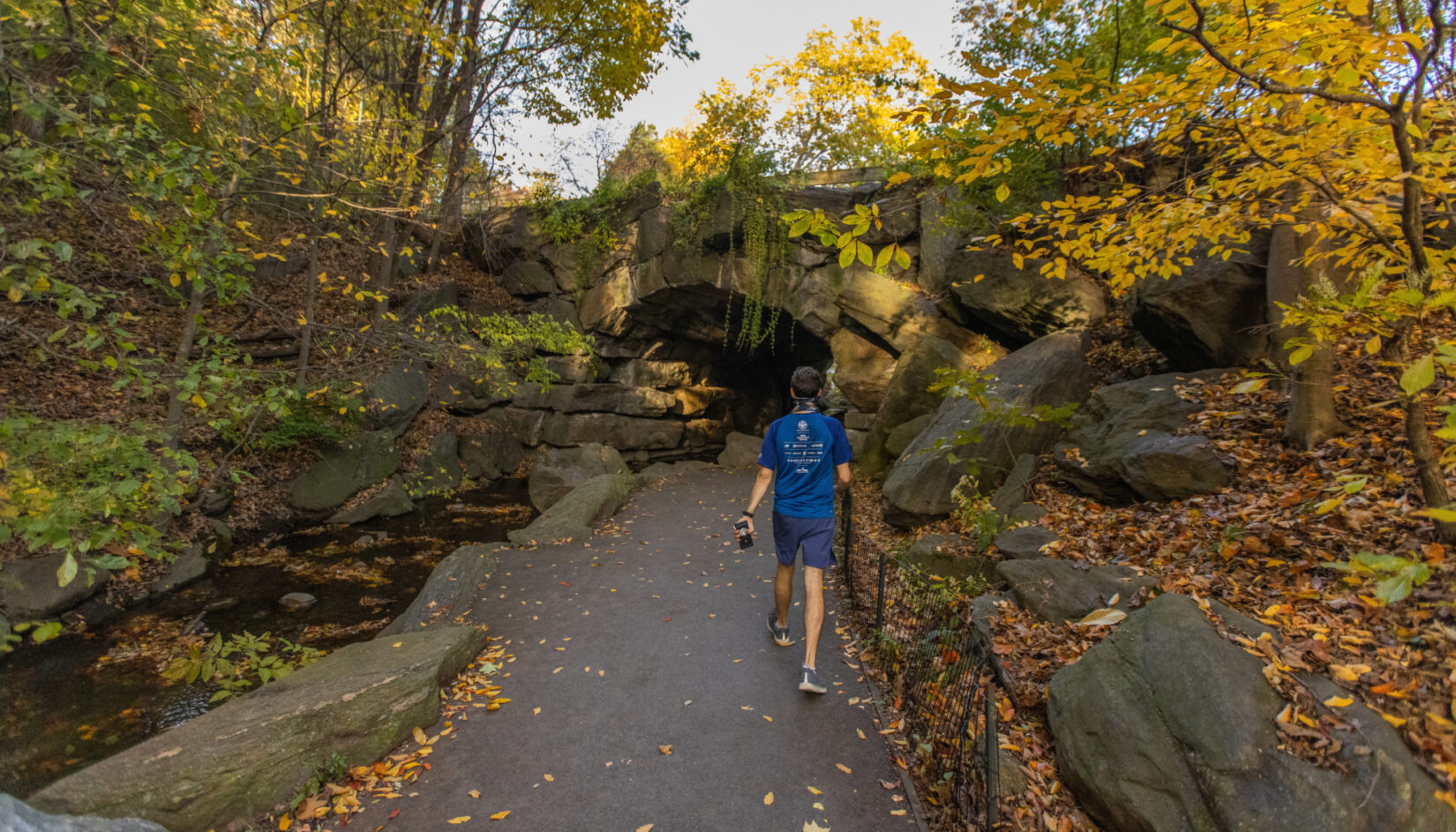 A parkgoer on a healthy walk, heading for the Huddlestone Arch in autumn
