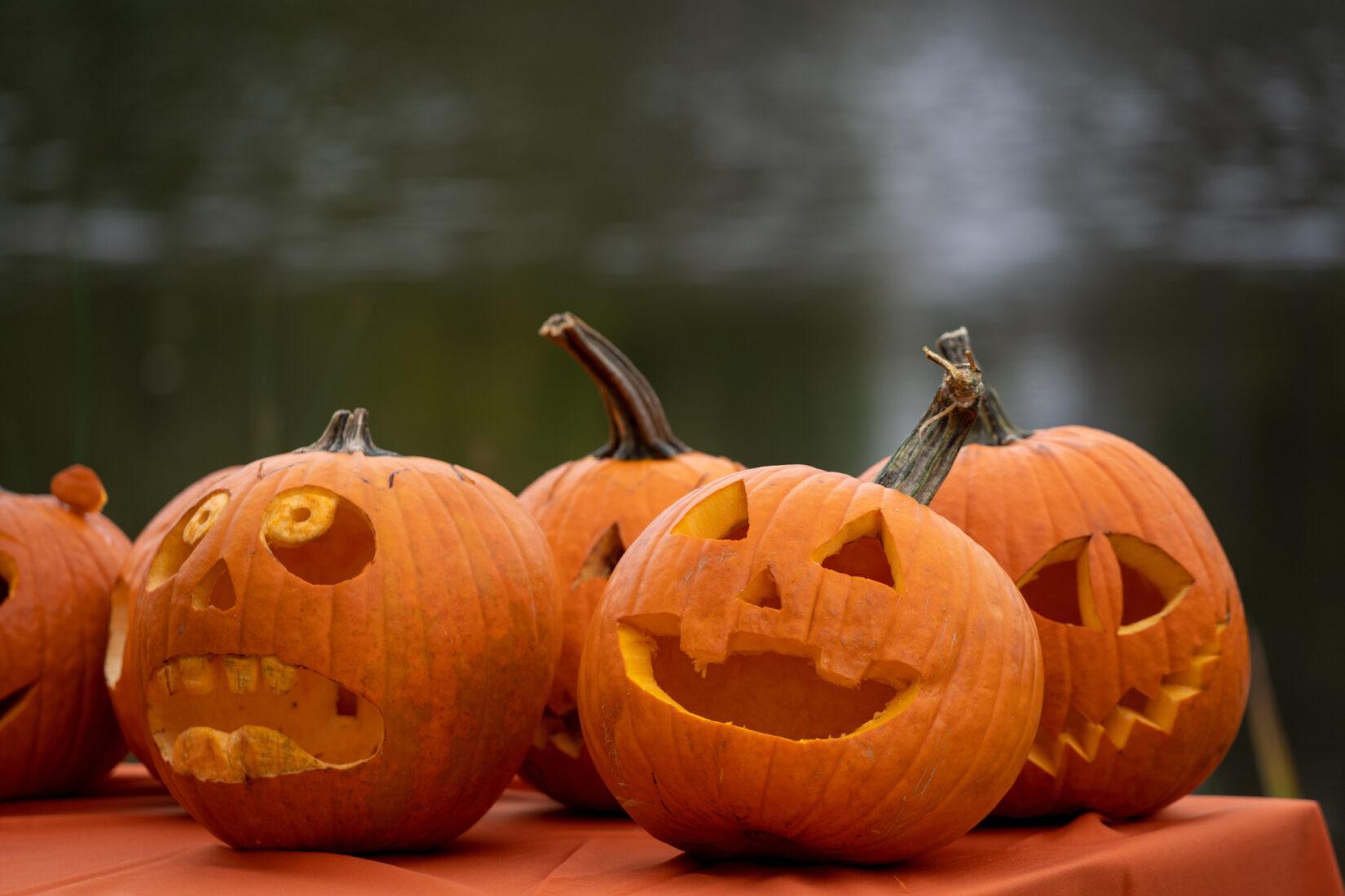 Creepy, carved pumpkins on the Harlem Meer