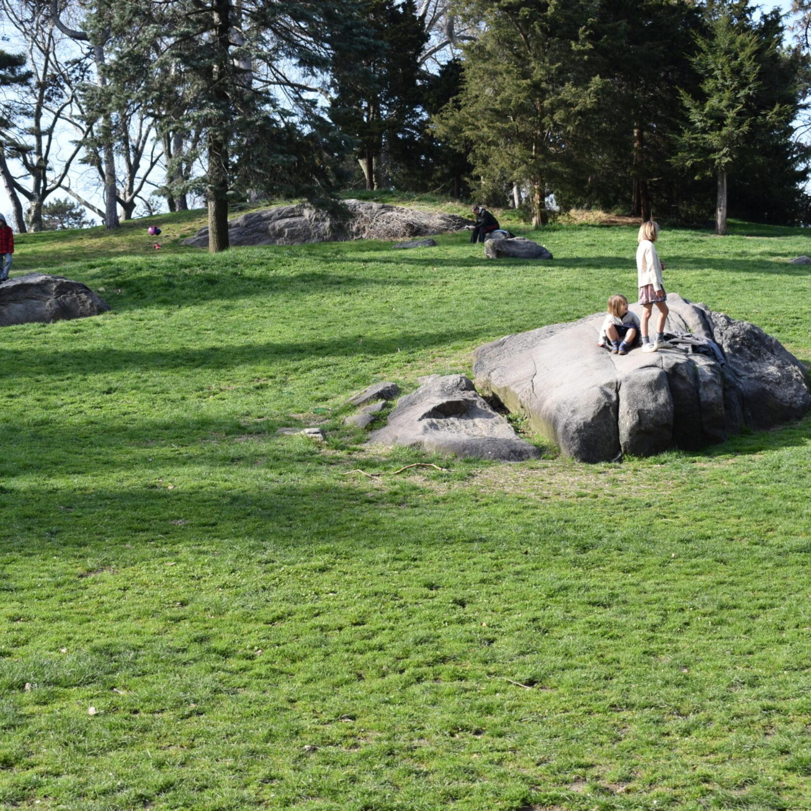 A boulder highlights the landscape of Cedar Hill