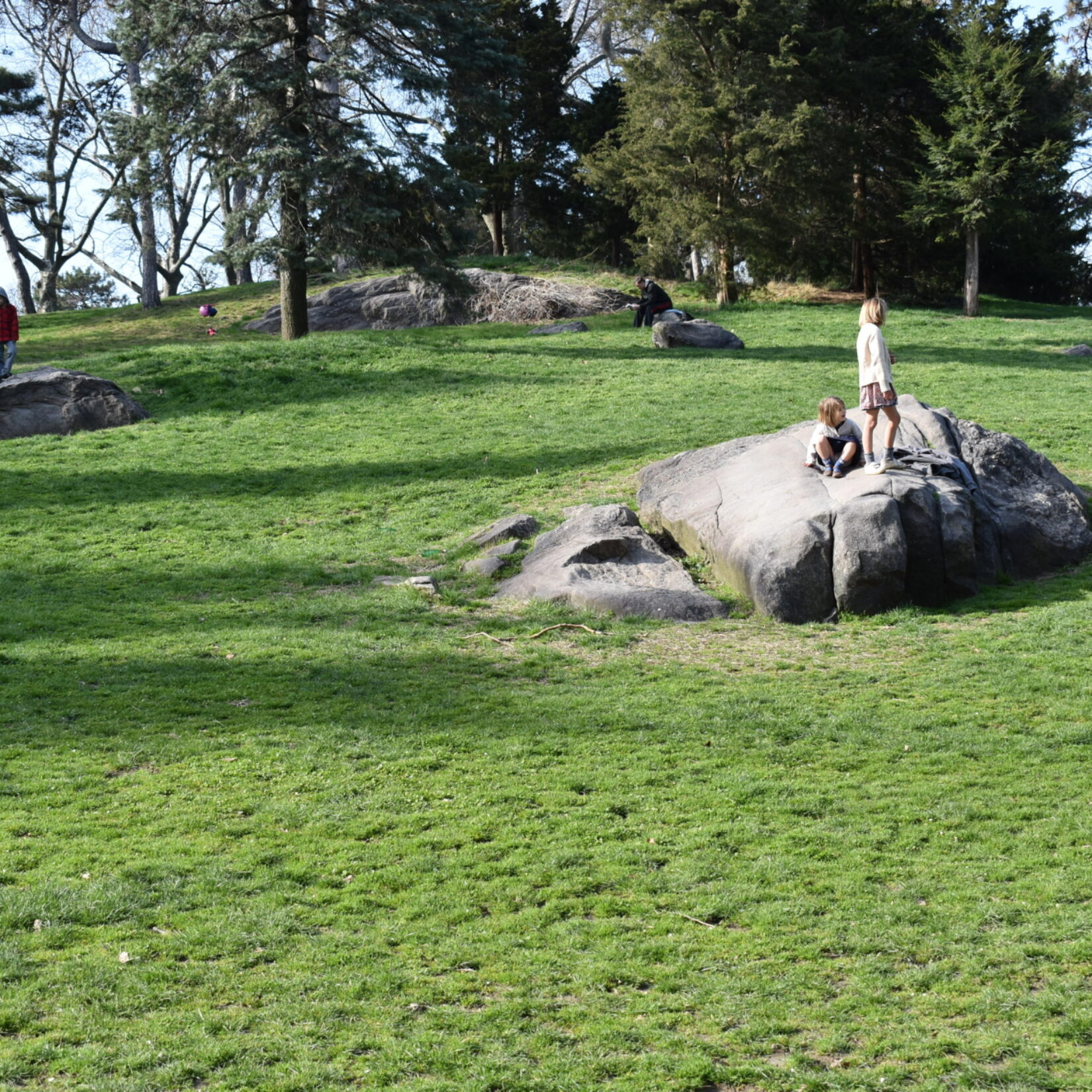 A boulder highlights the landscape of Cedar Hill