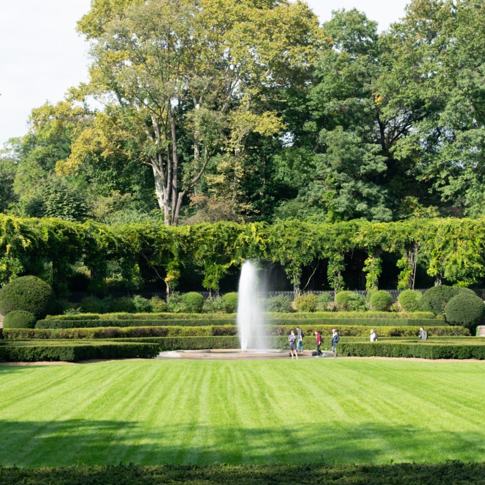 A symmetric view of the garden, the fountain, and the pergola in the background