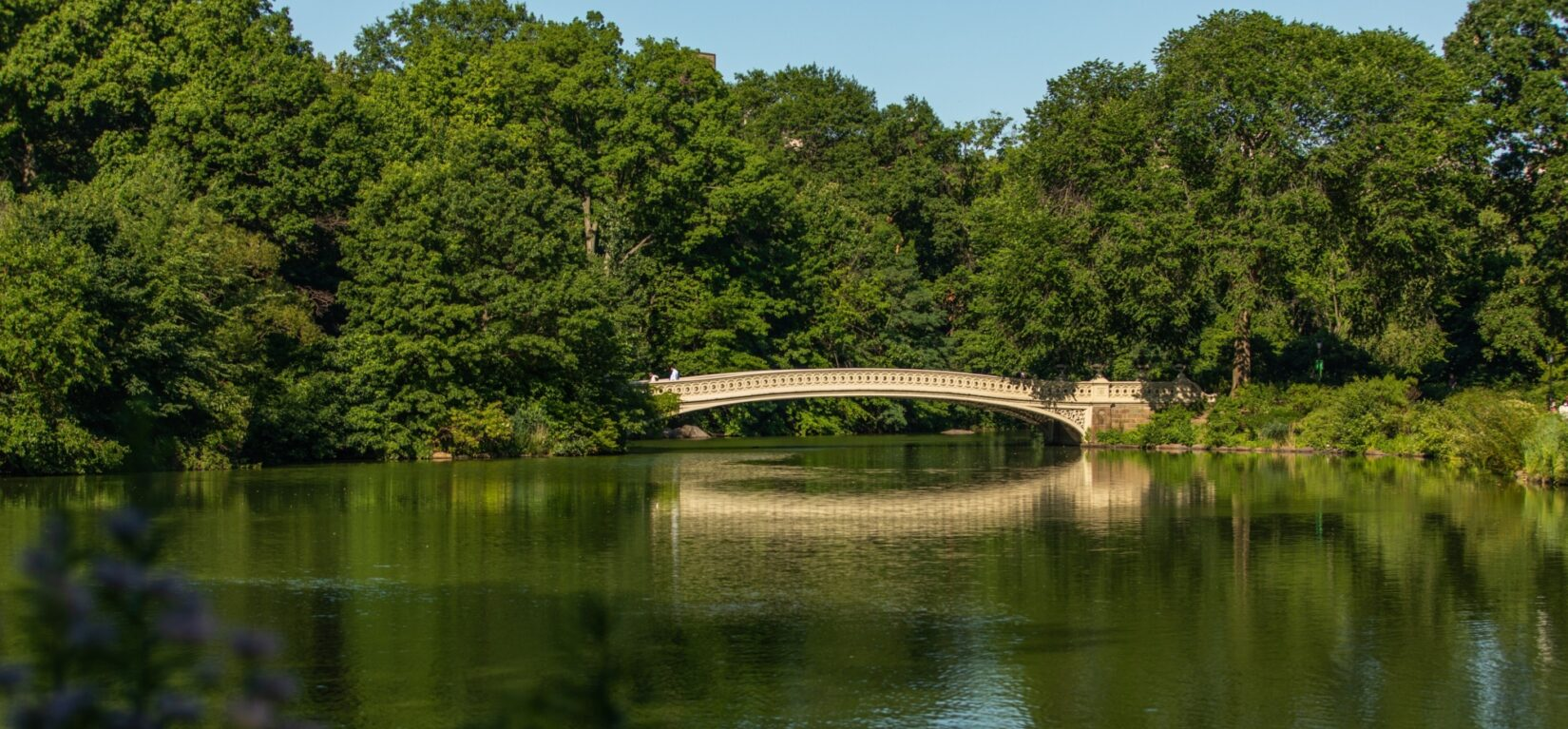 Bow Bridge in summer, its span reflected in the water below