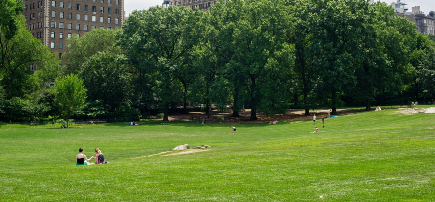 Visitors spread out on the lawn of the East Meadow