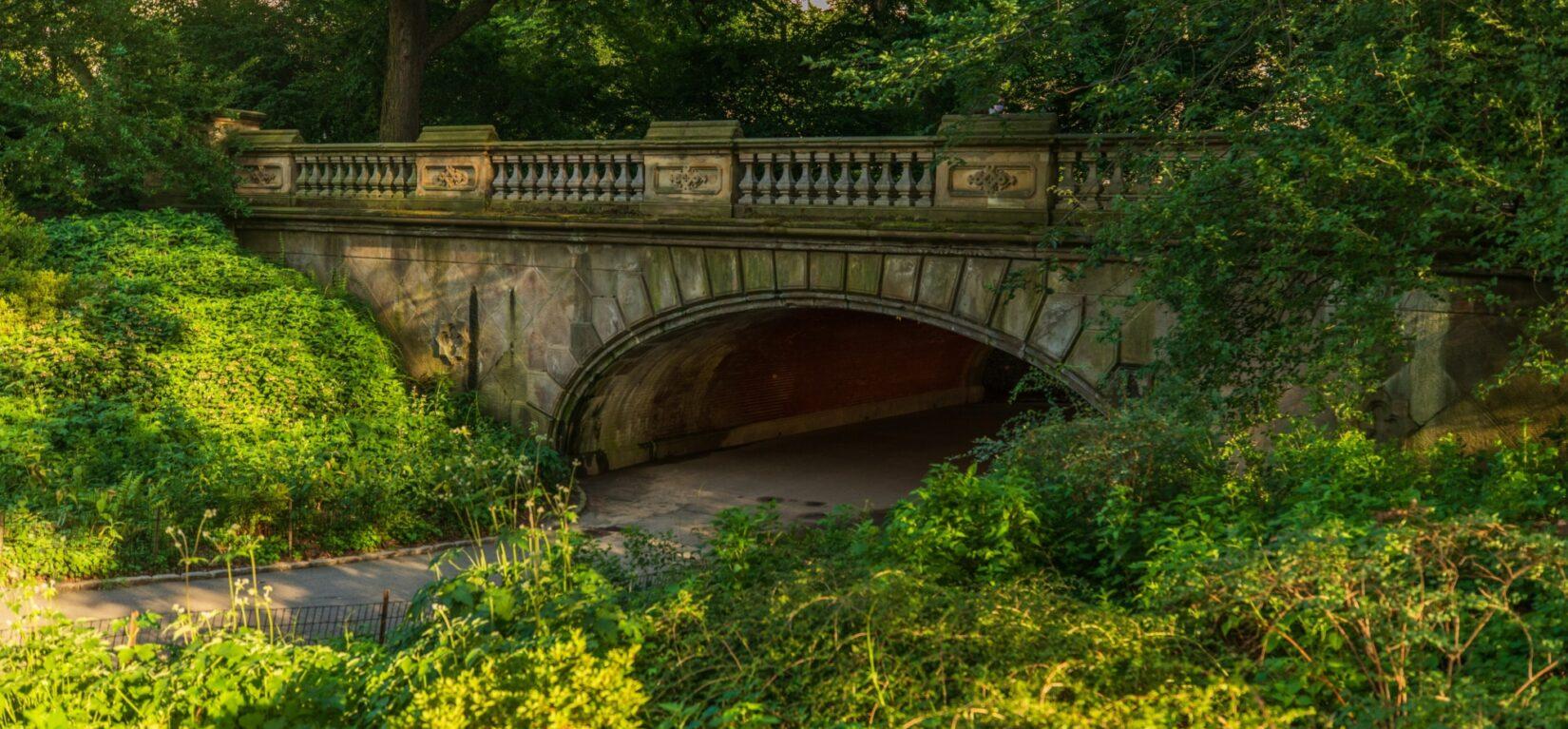Glade Arch in summer