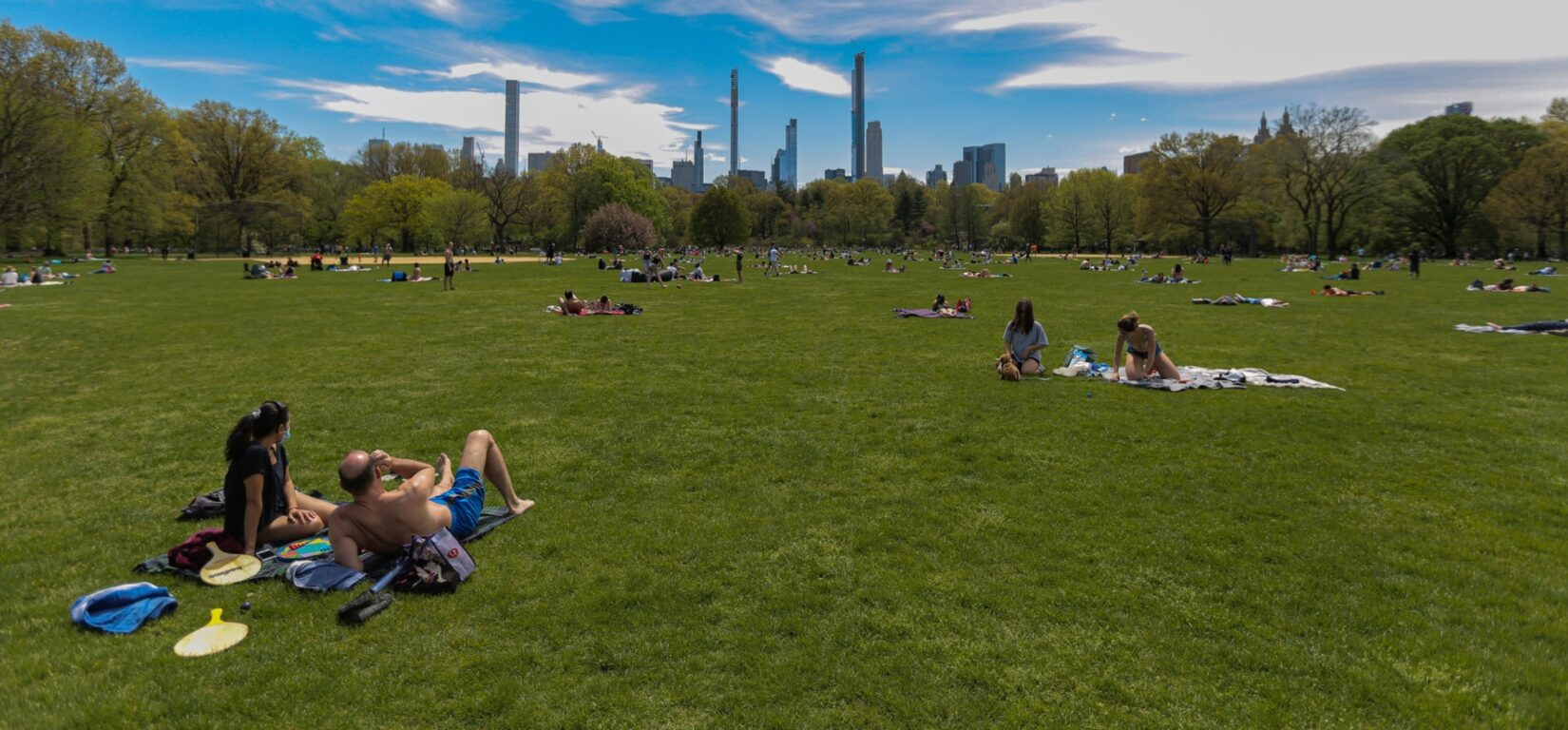 A sweeping view of the great lawn in early autumn, with the skyline of 57th Street in the background