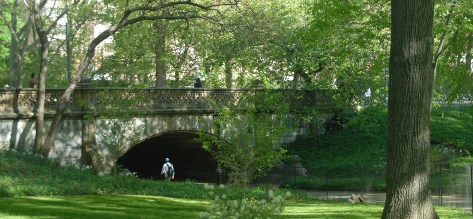 A man strolls beneath the span of Greyshot Arch in spring