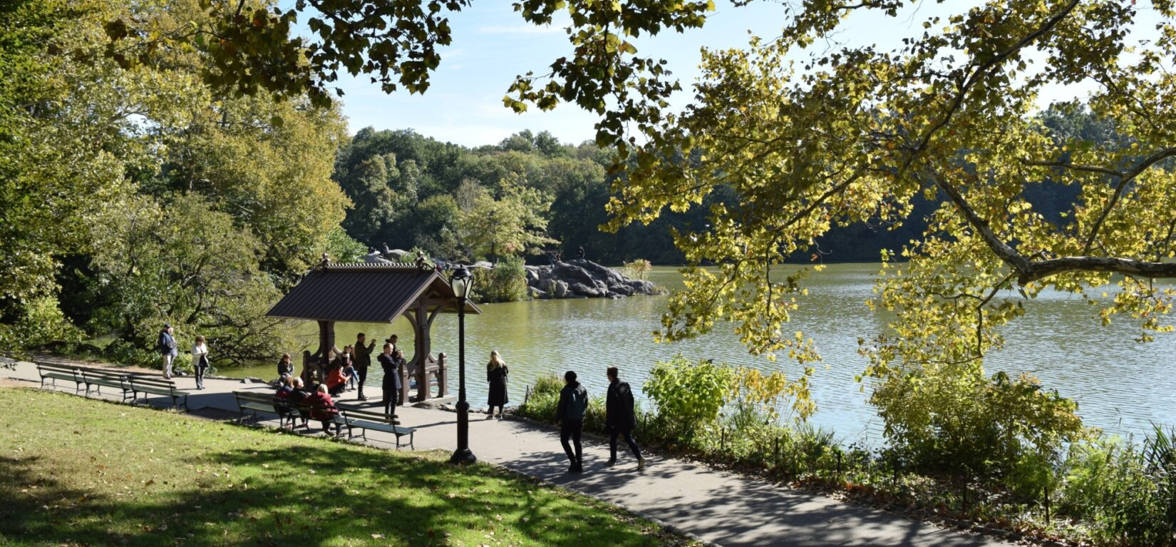 Visitors take in the view from the Hernshead Boat Landing on a sunny day