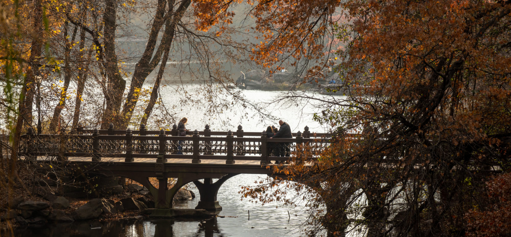 Oak Bridge Fall 20191125 07423