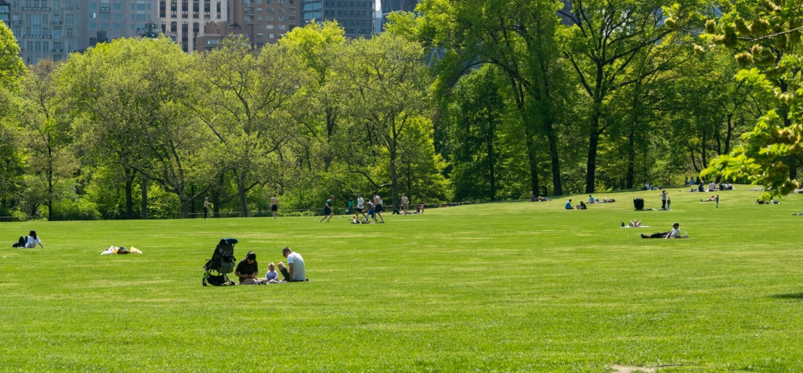 Visitors dot the vivid green lawn of the Sheep Meadow